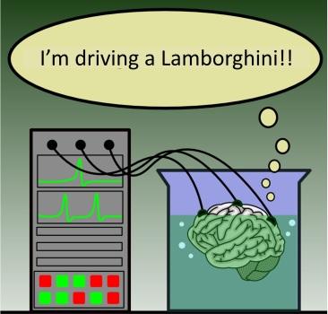 DrivingaLamborghini